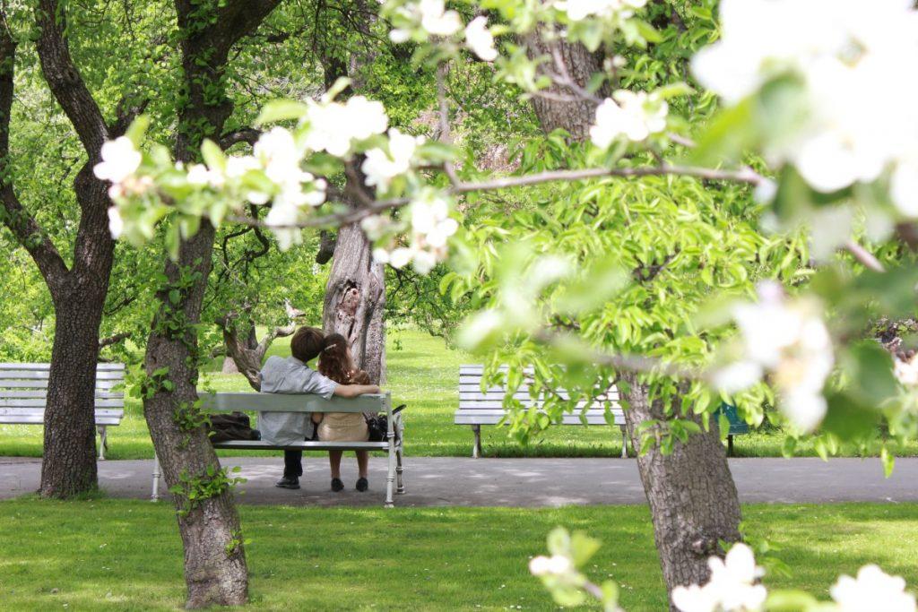 Вояновы сады — тихое место в центре Праги