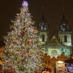 Куда исчезают новогодние ели из Праги?