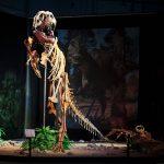 Динозавры в Праге.