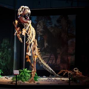 Динозавры в Праге